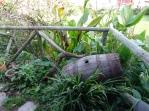 Garden Espacio Antares