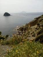 View down - Pollara