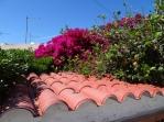 Casa Genovese garden