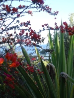 Lush plants + flowers