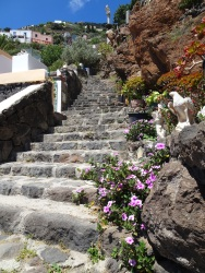 Steps everywhere