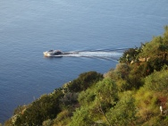 The hydrofoil seen from above
