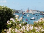 Flowers and the Scillonian