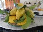 Enormous lemons