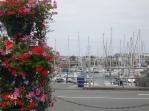 Masts & Flowers