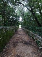 Pathways across the island