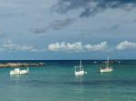 Form boats