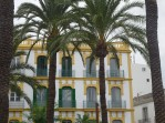 Eivissa palms + buildings