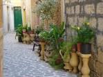 Il Borgo plants