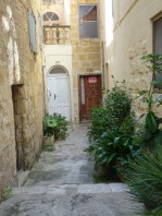 Il Borgo houses + plants