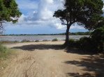 Ses Salines National Park